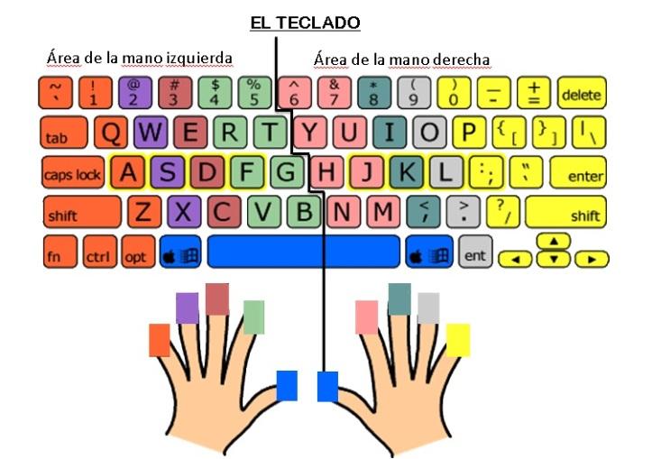 Mecanografía-Posición de los dedos en el teclado